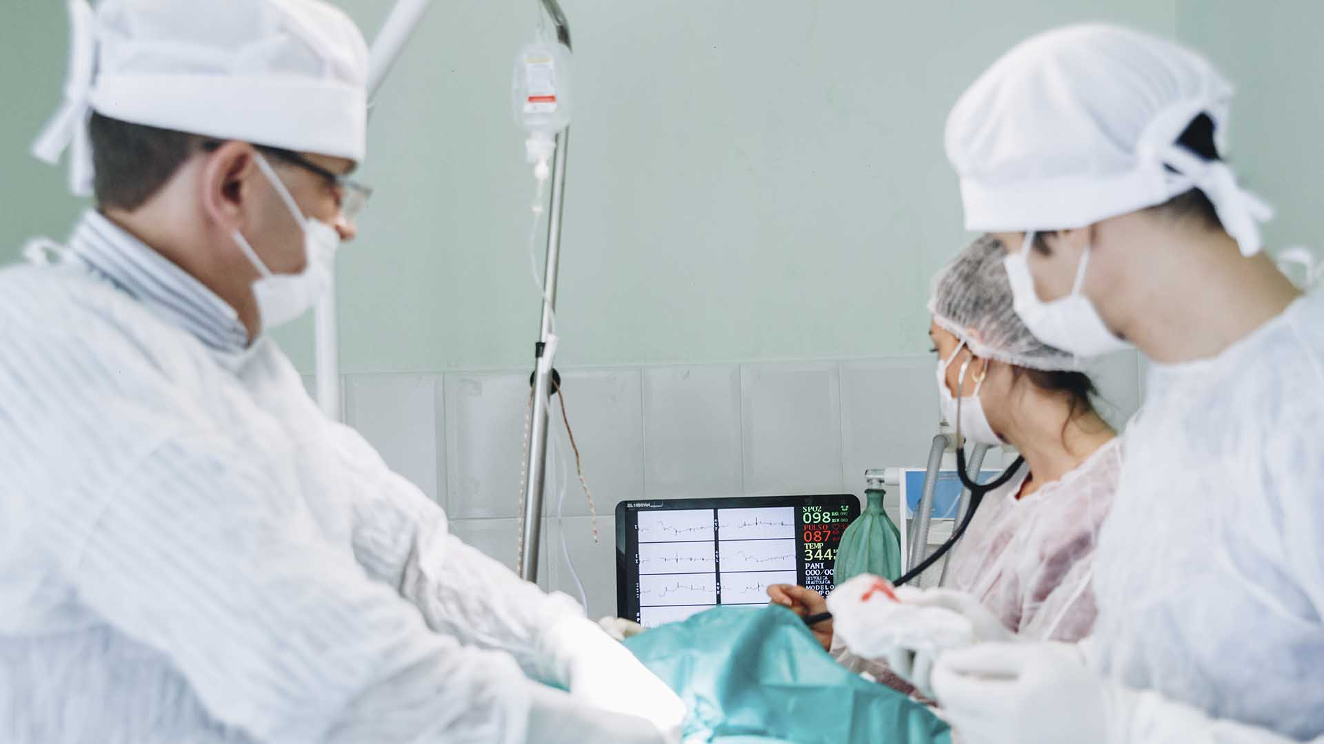 cirurgia-reino-animal-3