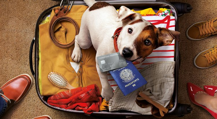 Quero viajar com meu Pet. O que fazer?
